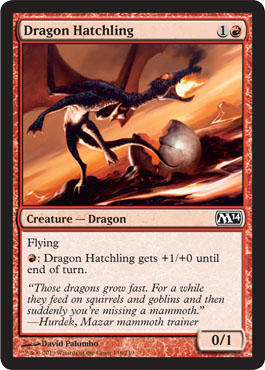 Dragon Hatchling