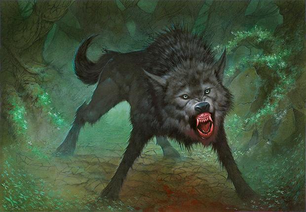 18 wolf
