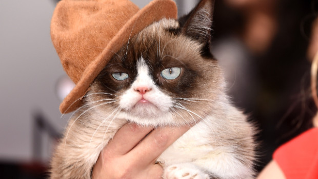 grumpy-cat-pharrell-hat