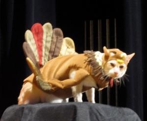 Cat-in-roasted-turkey-costume1