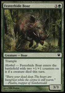 festerhide-boar