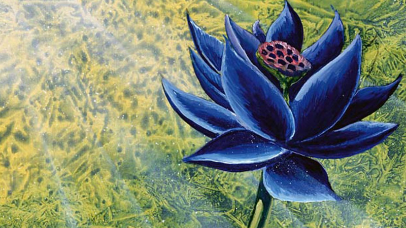 preview image for Original Black Lotus Sketches Offered for Sale - Hipsters of the Coast